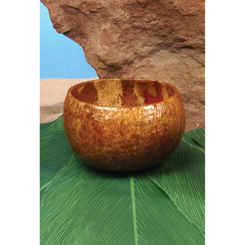 Cup - Coconut Cup